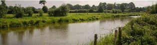 Les cours d'eau du Pays-de-Pouzauges