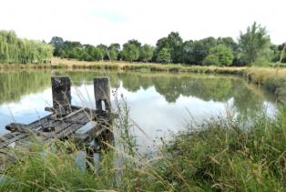 Inédit, les effacements d'étangs financés à 100 % pour les propriétaires qui le souhaitent